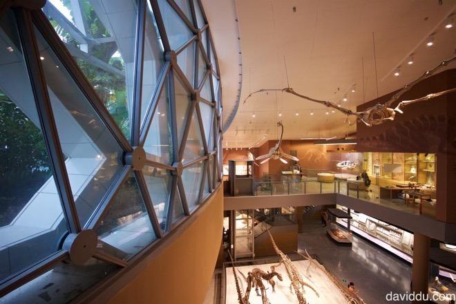上海自然科學博物館新館