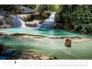 Calendar 2019 008